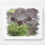 Deer hiding in bushes mousepads
