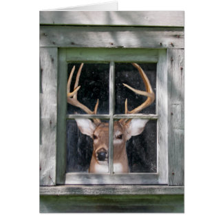Deer Hunter's birthday Card