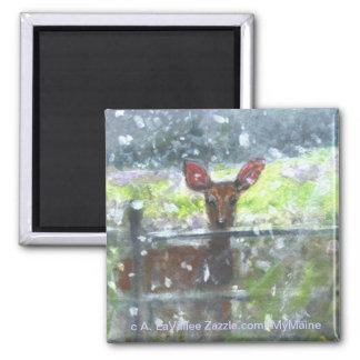 Deer in a snow storm magnet