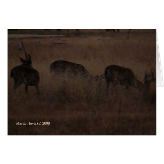 Deer in Dry Grass (2a) - Customizable Card