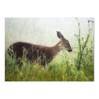 Deer In Field Card