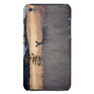 Deer in field of tall grass iPod touch Case-Mate case
