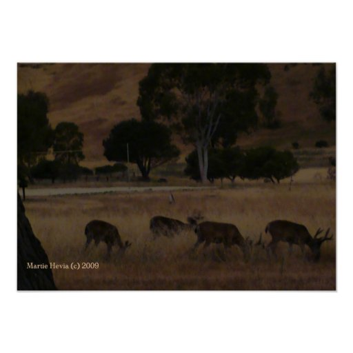 Deer in Hills Print - Select Your Frame