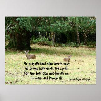 Deer in Meadow Poem Print
