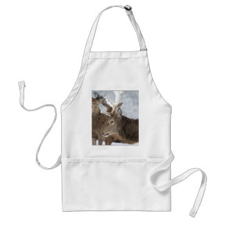 Deer in Snow Apron