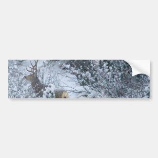 Deer in Snow Bumper Sticker