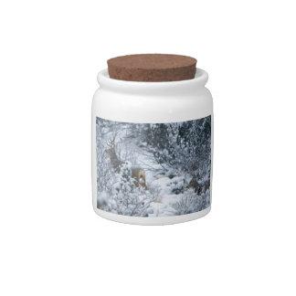 Deer in Snow Candy Jars