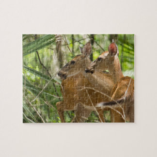 Deer in Sync Jigsaw Puzzle