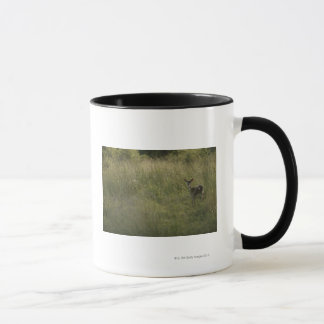 Deer in tall grass mug