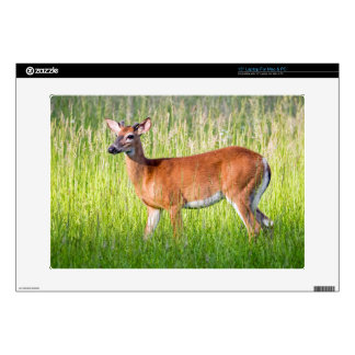 "Deer In Tall Grass Skin For 15"" Laptop"