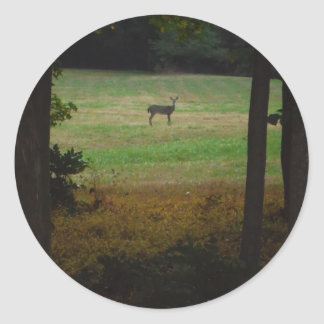 Deer in the Distance Classic Round Sticker