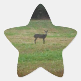 Deer in the Distance Star Sticker