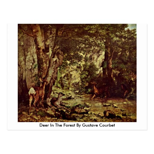 Deer In The Forest By Gustave Courbet Postcard