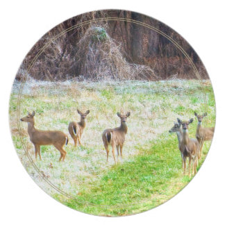 Deer in the Frost Dinner Plate
