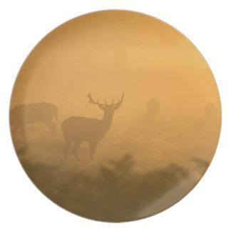 Deer in the Morning Glow Melamine Plate