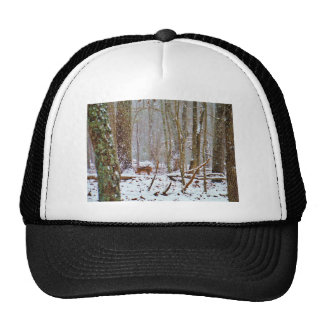 Deer in the snow licking leg mesh hat