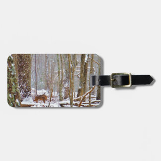 Deer in the snow licking leg tag for luggage