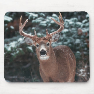 Deer in the Snow Mousepad