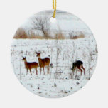 Deer In the snow Ornaments