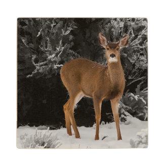 DEER IN THE SNOW WOOD COASTER