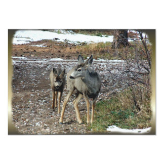Deer in the Wild on Gift Products Card
