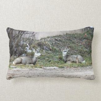 Deer in the Wild Throw Pillow