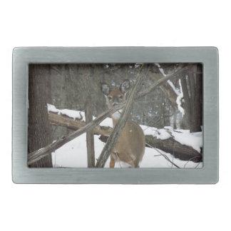 Deer In The Woods Belt Buckle