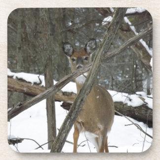 Deer In The Woods Cork Coaster