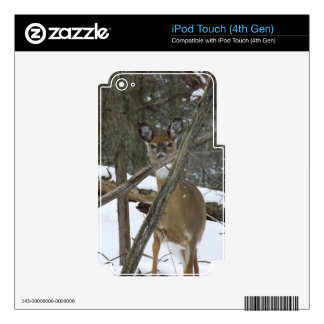 Deer In The Woods iPod Touch 4th Gen Skin iPod Touch 4G Decals
