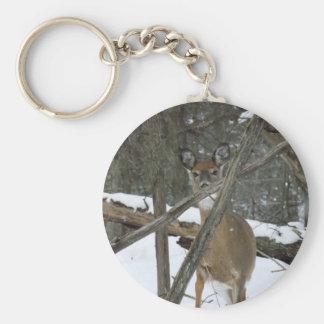Deer In The Woods Keychain