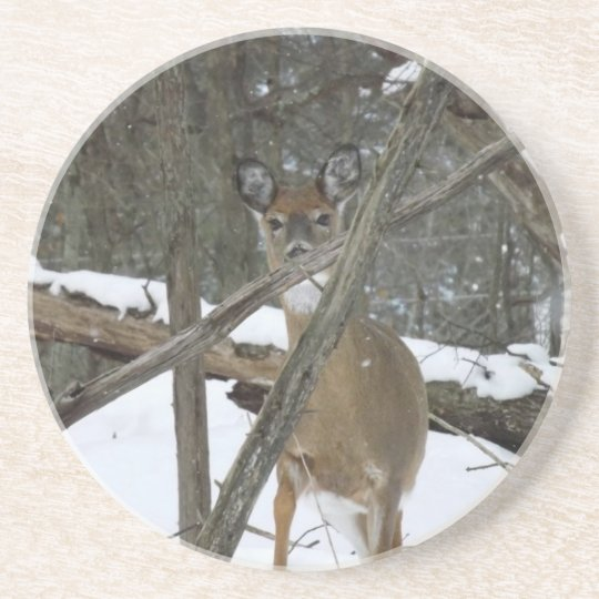 Deer In The Woods Sandstone Coaster