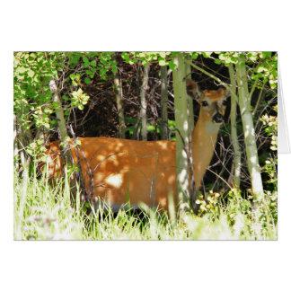Deer in trees greeting card