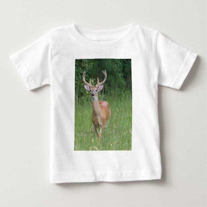 Deer in Velvet Baby T-Shirt