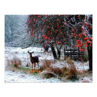 Deer in Winter Custom Announcements