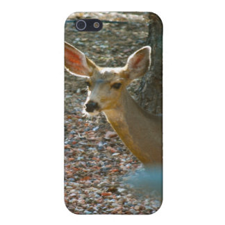 Deer in Woods Case For iPhone SE/5/5s
