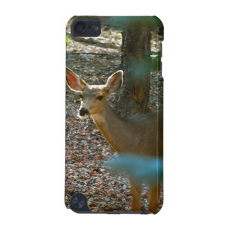 Deer in Woods iPod Touch (5th Generation) Case