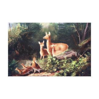 Deer in Woods Vintage Painting Canvas Print