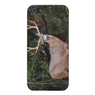 Deer iPhone 4 Speck Cover For iPhone SE/5/5s