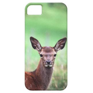 deer iPhone SE/5/5s case