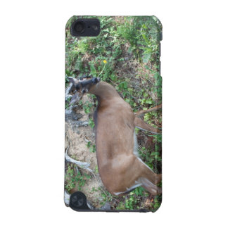 Deer iPod Touch Case