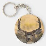 deer keychain