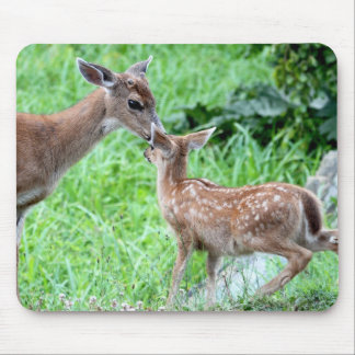 Deer Kissing Fawn Mouse Pad