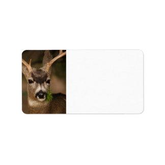 deer label