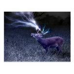 Deer Lightning Postcards