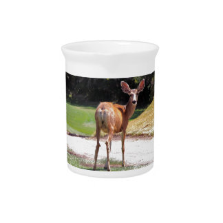 deer looking at the camera nature beverage pitcher
