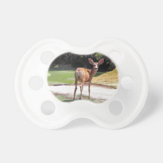 deer looking at the camera nature pacifier
