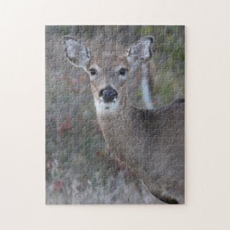 Deer Looking At You Jigsaw Puzzle