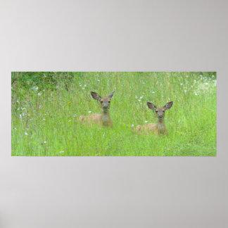 Deer Meadow Print