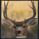 "deer napkin<br><div class=""desc"">deer buck... Using amazing, unique, and high-quality images of wildlife and nature, WorldDesign is dedicated to creating fun and beautiful products for people to enjoy, share, and promote as gifts. We are a Zazzle Elite ProSeller and own the copyright to all the images presented and ALL of our products are...</div>"