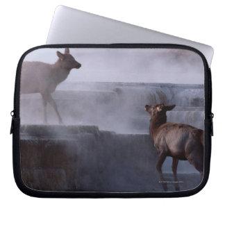 Deer on Rock Formation Computer Sleeve